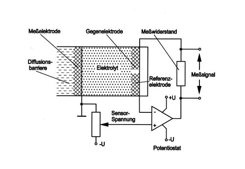 Aufbau elektrochemischer Sensor (Drei-Elektrodensensor)